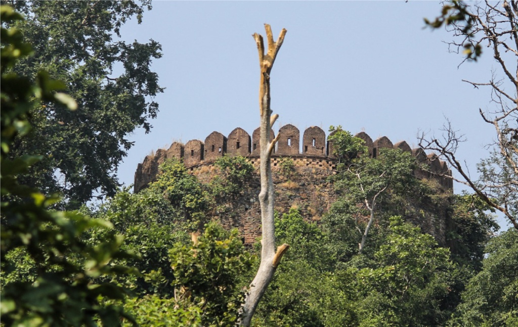 Palamau Fort Latehar