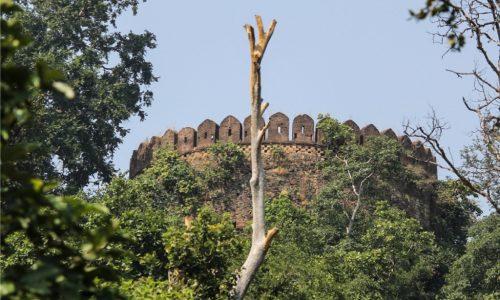 Palamau Fort Latehar